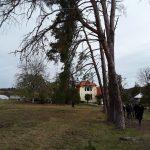 Badacin Casa memoriala Gradina aleea spre morminte